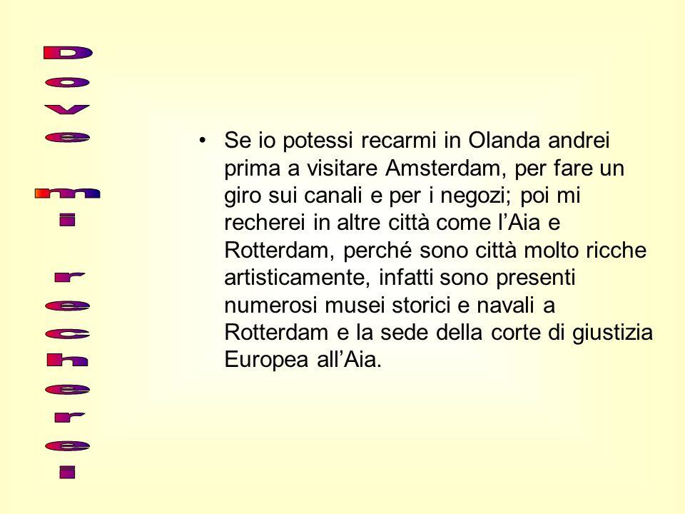 Se io potessi recarmi in Olanda andrei prima a visitare Amsterdam, per fare un giro sui canali e per i negozi; poi mi recherei in altre città come l'Aia e Rotterdam, perché sono città molto ricche artisticamente, infatti sono presenti numerosi musei storici e navali a Rotterdam e la sede della corte di giustizia Europea all'Aia.