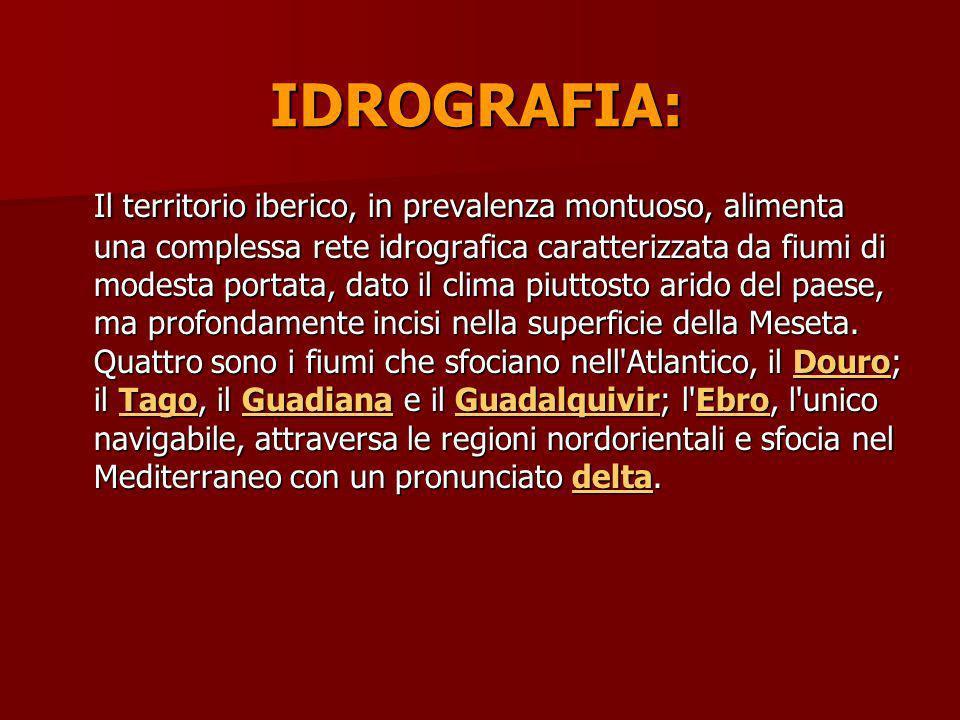 IDROGRAFIA: