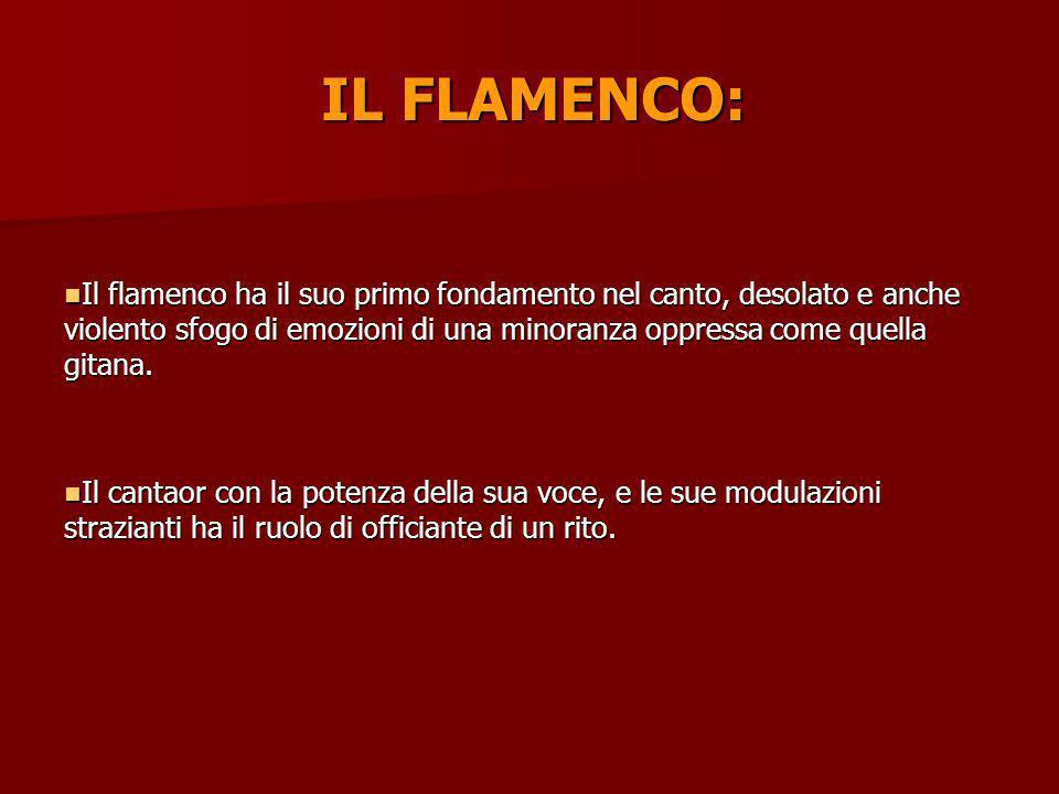 IL FLAMENCO: