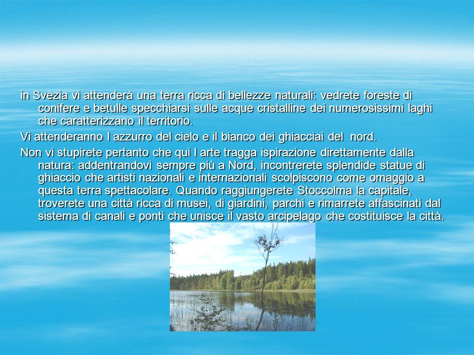 in Svezia vi attenderà una terra ricca di bellezze naturali: vedrete foreste di conifere e betulle specchiarsi sulle acque cristalline dei numerosissimi laghi che caratterizzano il territorio.