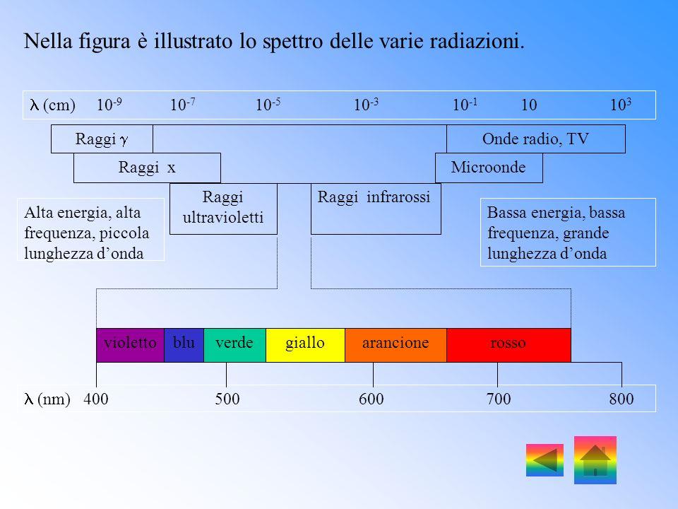 Nella figura è illustrato lo spettro delle varie radiazioni.