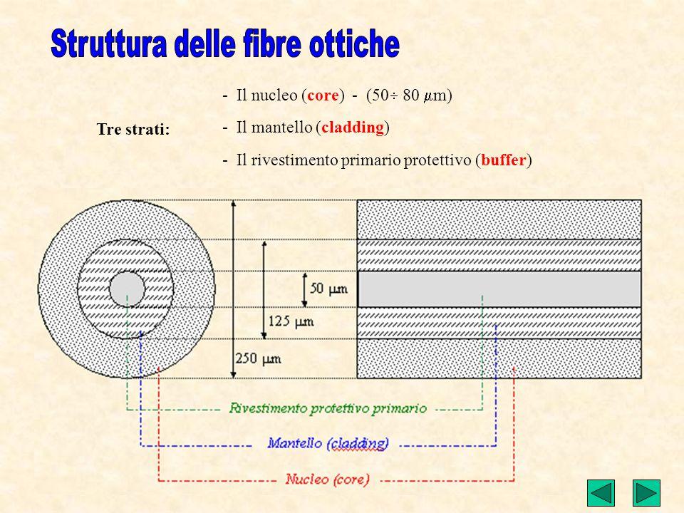 Struttura delle fibre ottiche