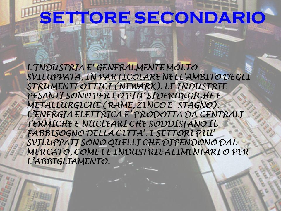 SETTORE SECONDARIO