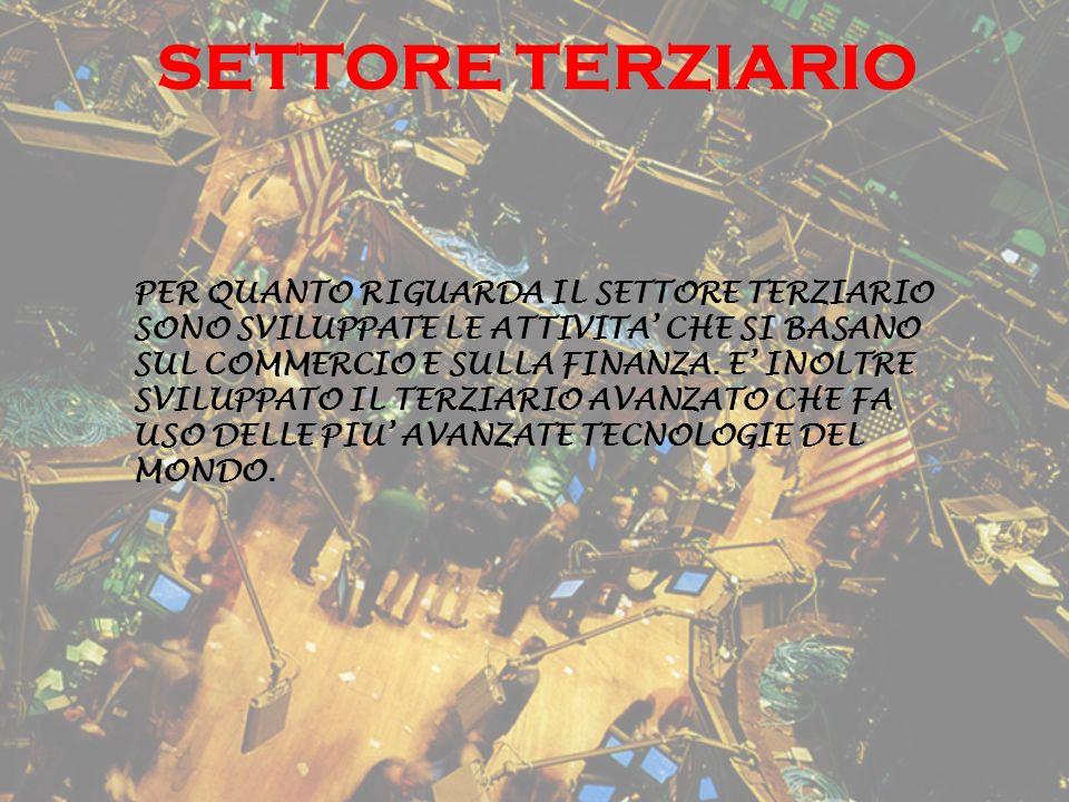 SETTORE TERZIARIO