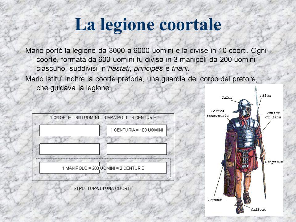 La legione coortale