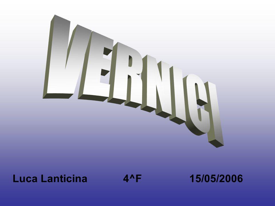 VERNICI Luca Lanticina 4^F 15/05/2006