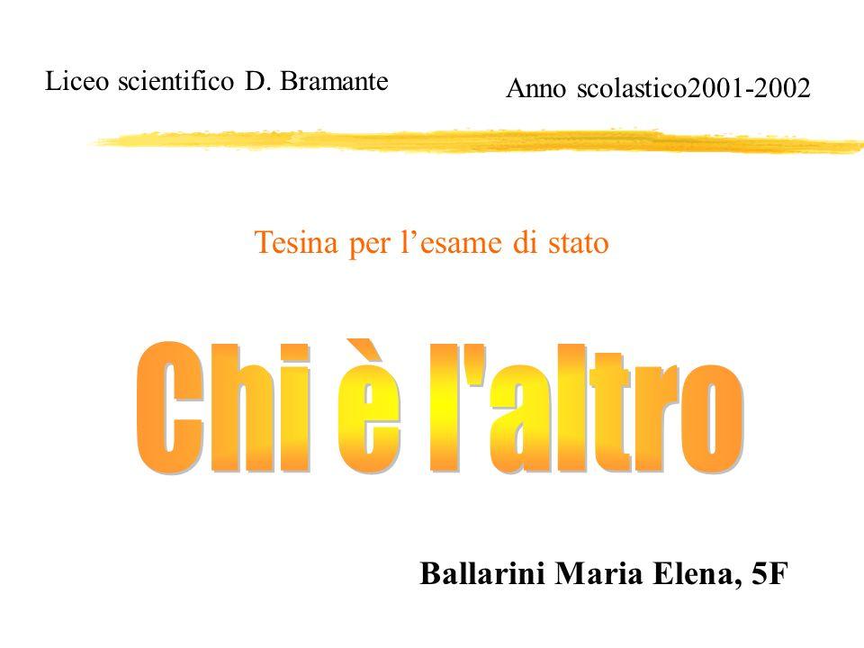 Chi è l altro Tesina per l'esame di stato Ballarini Maria Elena, 5F