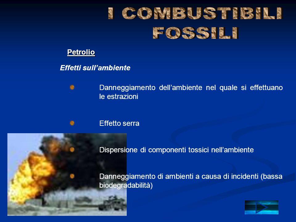 I COMBUSTIBILI FOSSILI Petrolio Effetti sull'ambiente