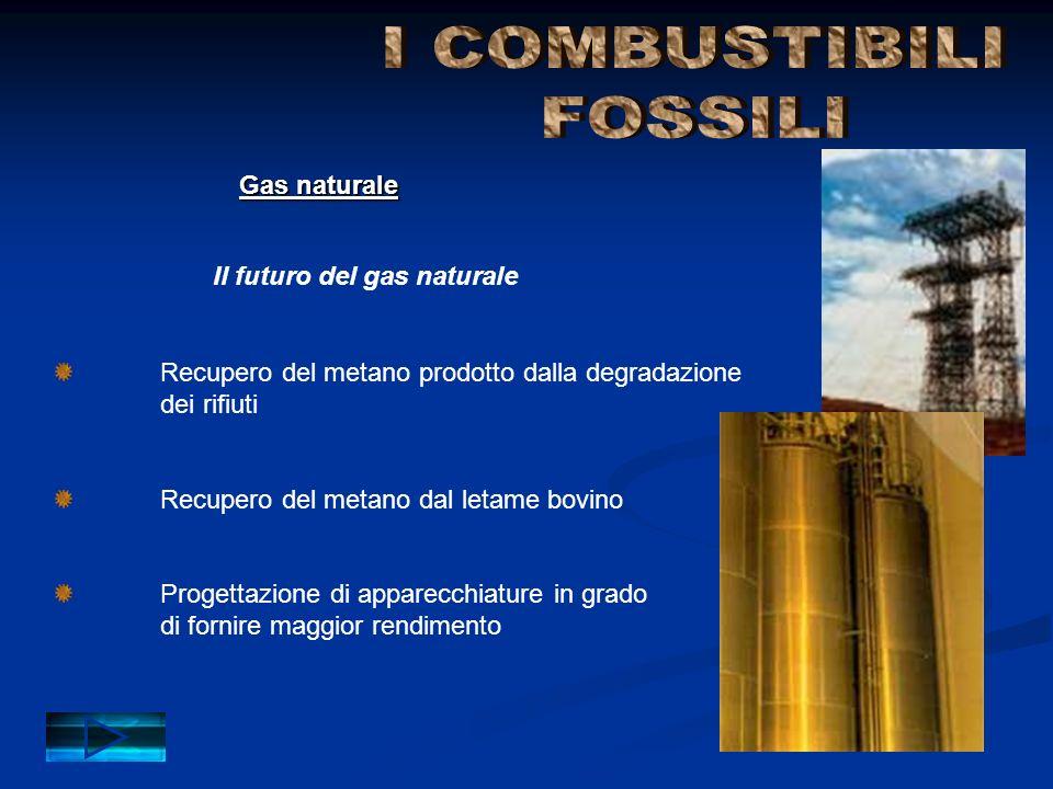 I COMBUSTIBILI FOSSILI Gas naturale Il futuro del gas naturale