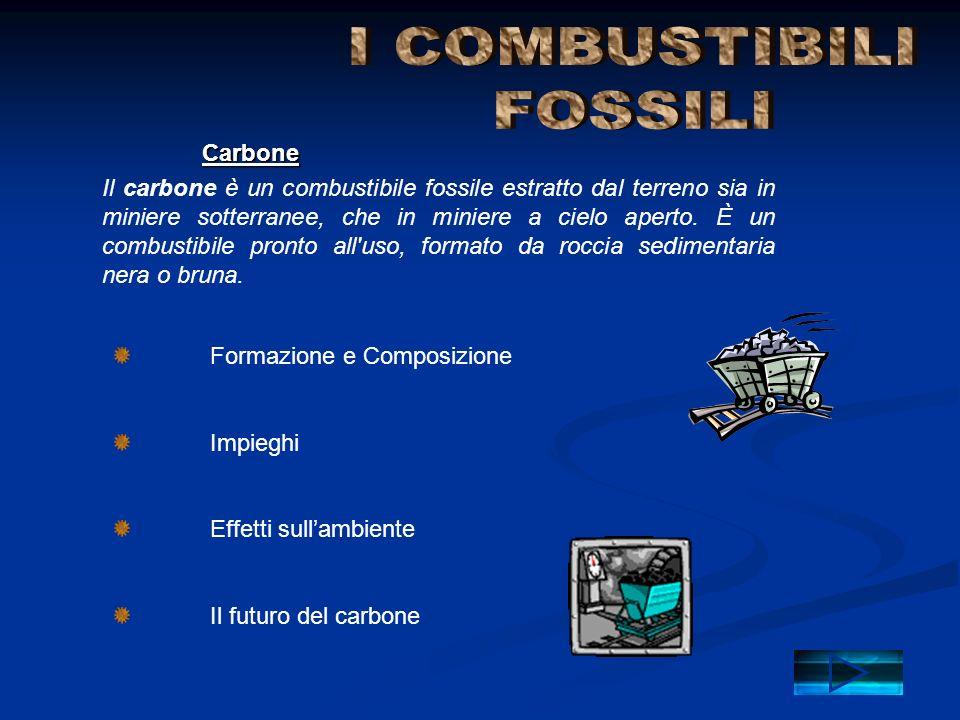 I COMBUSTIBILI FOSSILI Carbone
