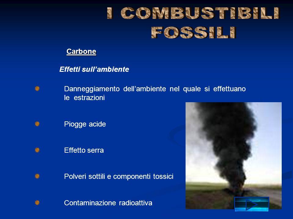 I COMBUSTIBILI FOSSILI Carbone Effetti sull'ambiente