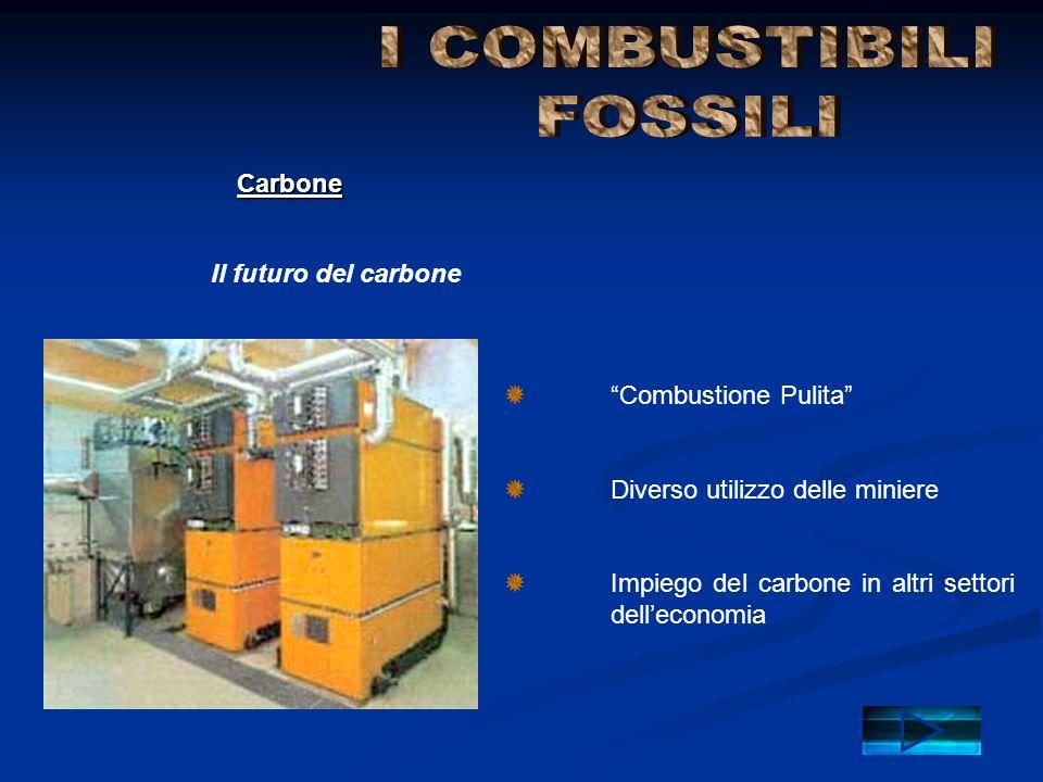 I COMBUSTIBILI FOSSILI Carbone Il futuro del carbone