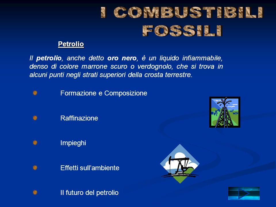 I COMBUSTIBILI FOSSILI Petrolio