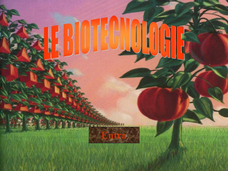 LE BIOTECNOLOGIE Entra
