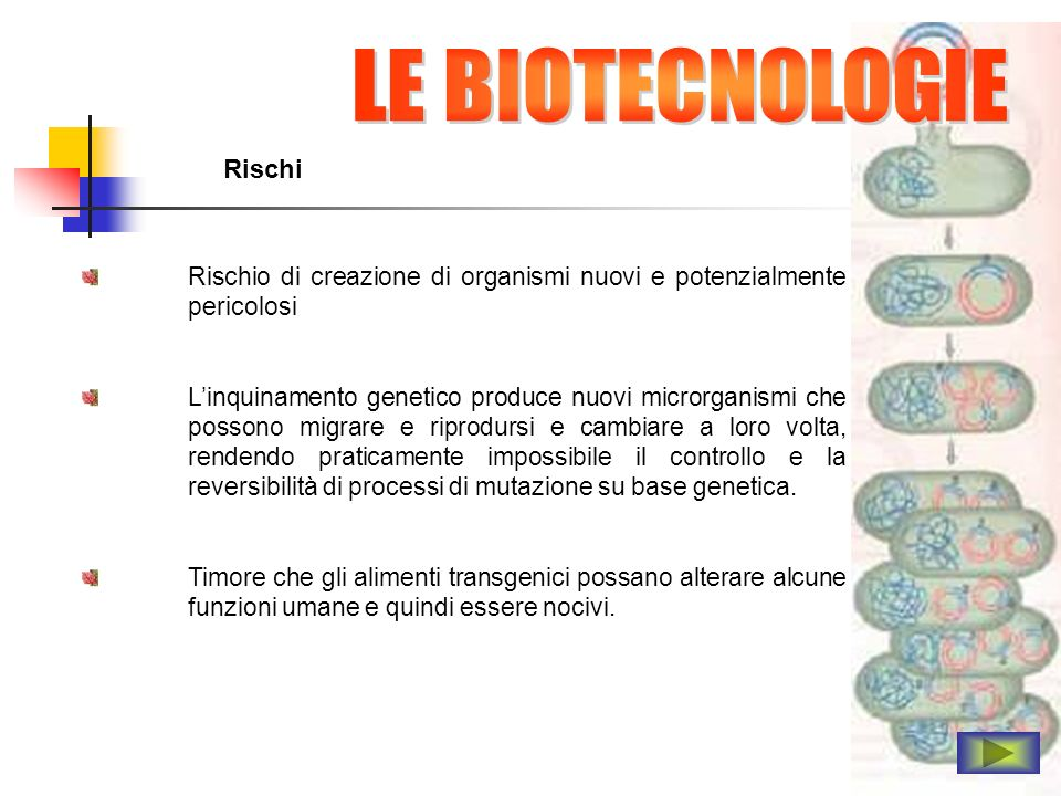 LE BIOTECNOLOGIE Rischi