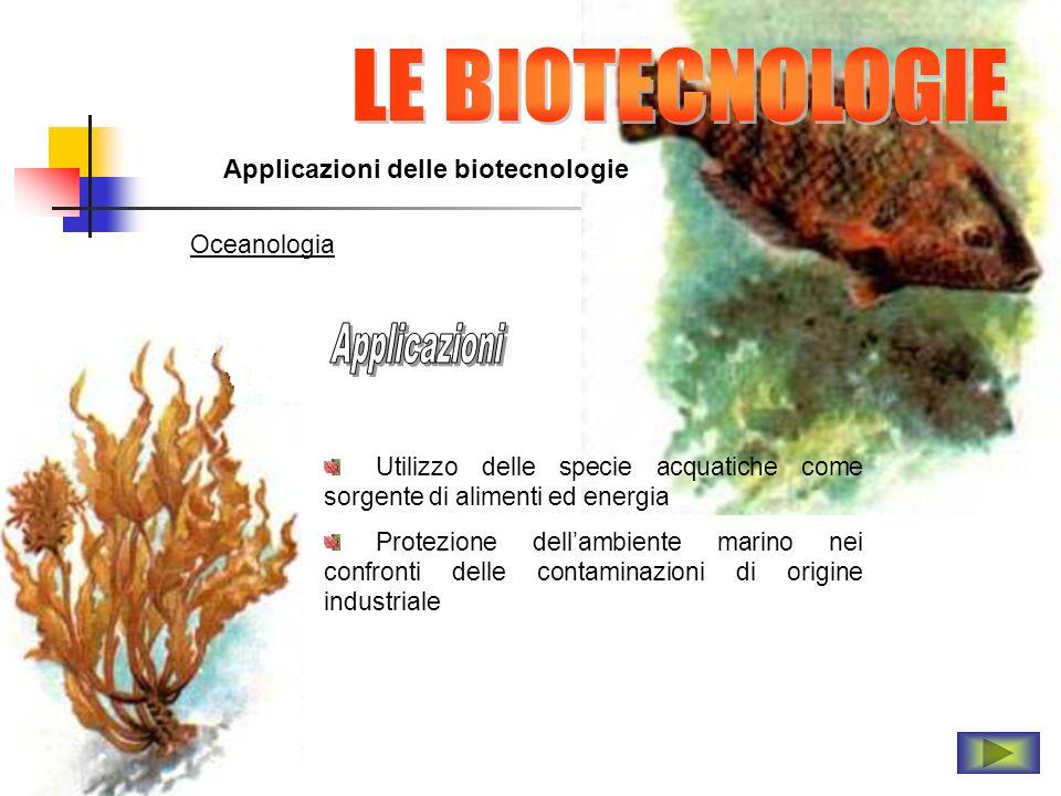 LE BIOTECNOLOGIE Applicazioni Applicazioni delle biotecnologie