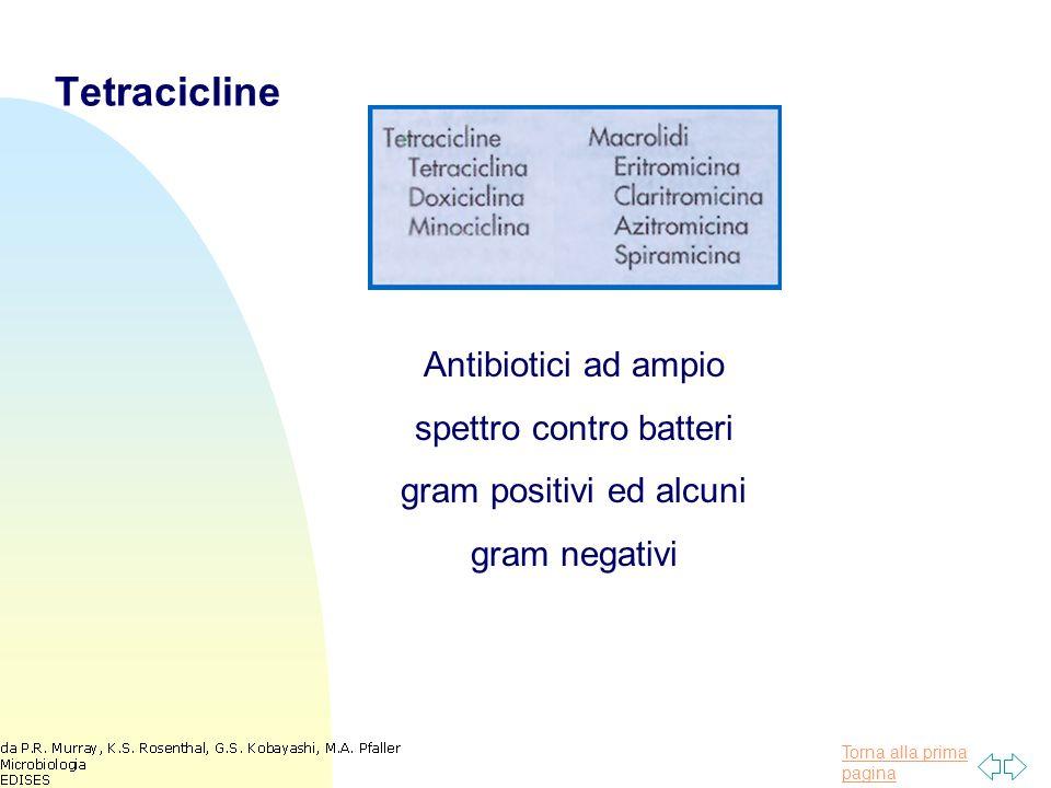 Tetracicline Antibiotici ad ampio spettro contro batteri gram positivi ed alcuni gram negativi