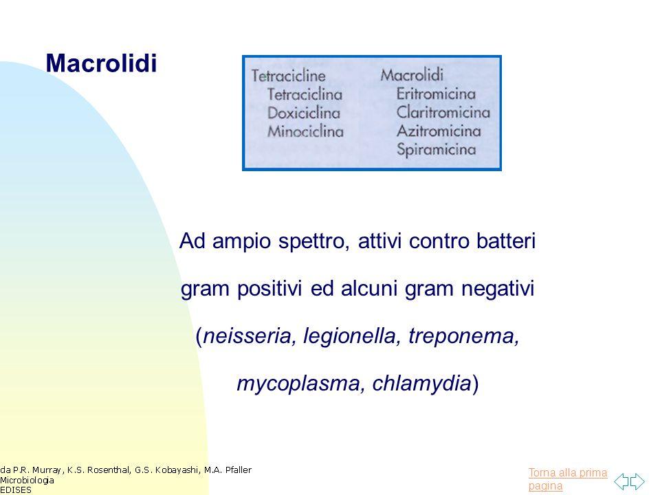 Macrolidi Ad ampio spettro, attivi contro batteri gram positivi ed alcuni gram negativi (neisseria, legionella, treponema, mycoplasma, chlamydia)