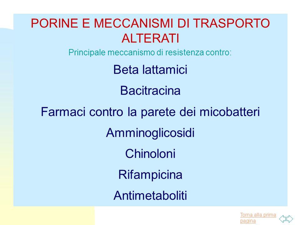 PORINE E MECCANISMI DI TRASPORTO ALTERATI