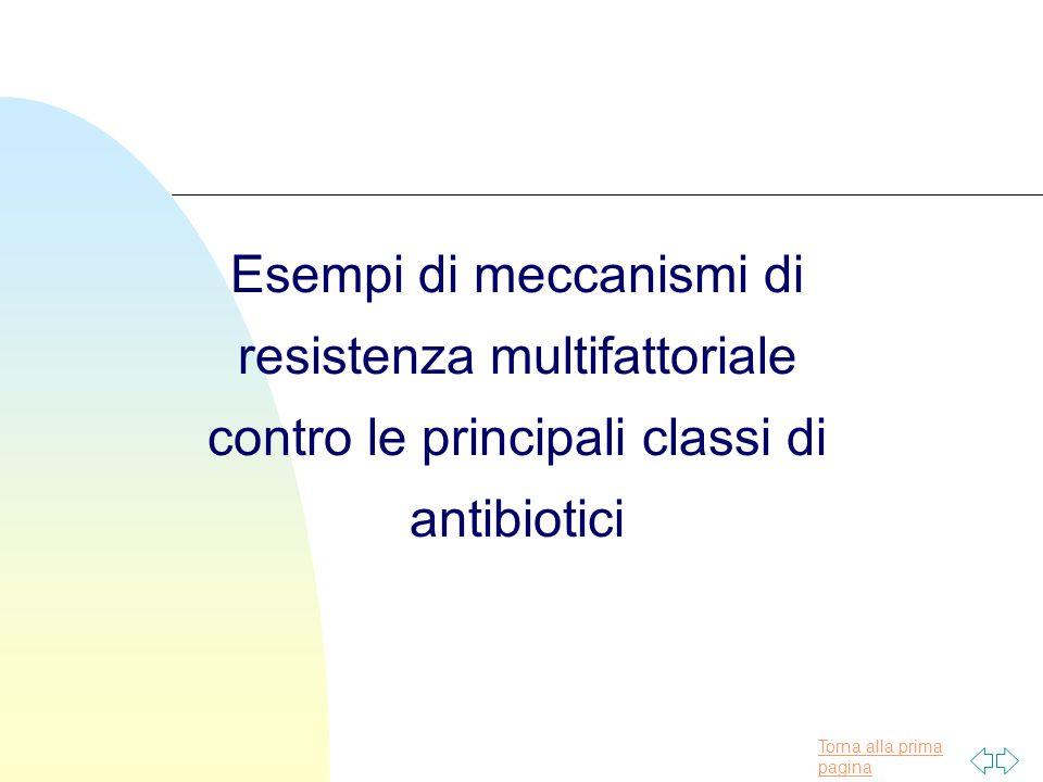 Esempi di meccanismi di resistenza multifattoriale contro le principali classi di antibiotici