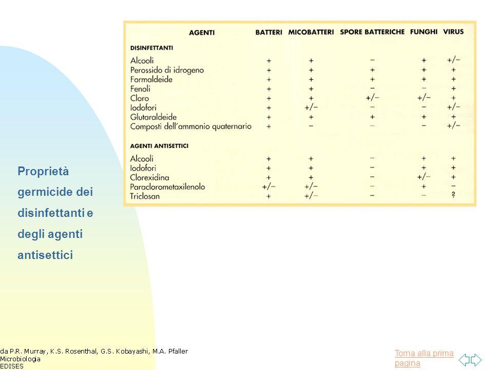 Proprietà germicide dei disinfettanti e degli agenti antisettici