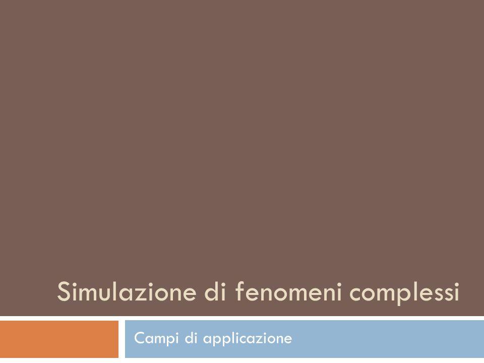Simulazione di fenomeni complessi