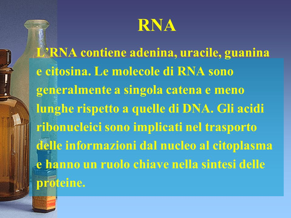 RNA L'RNA contiene adenina, uracile, guanina