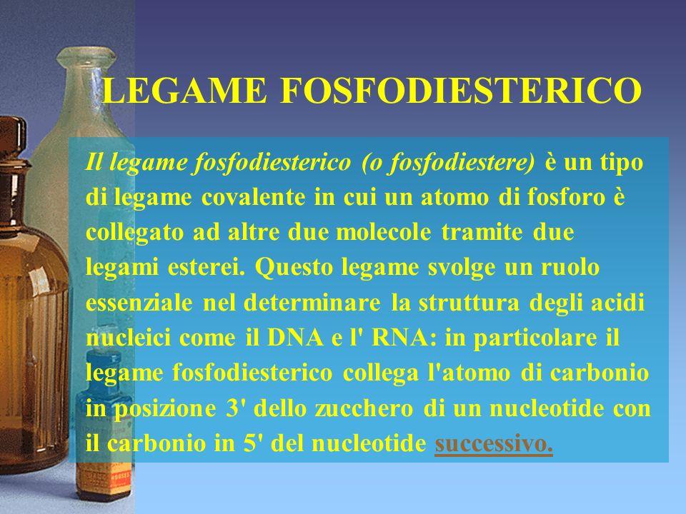 LEGAME FOSFODIESTERICO