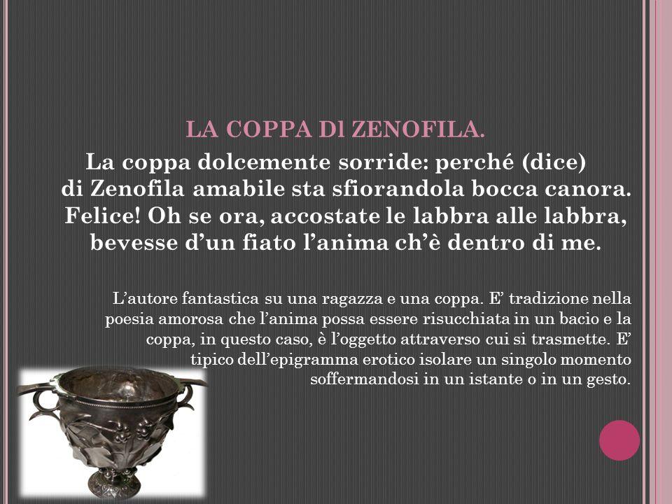 LA COPPA Dl ZENOFILA.