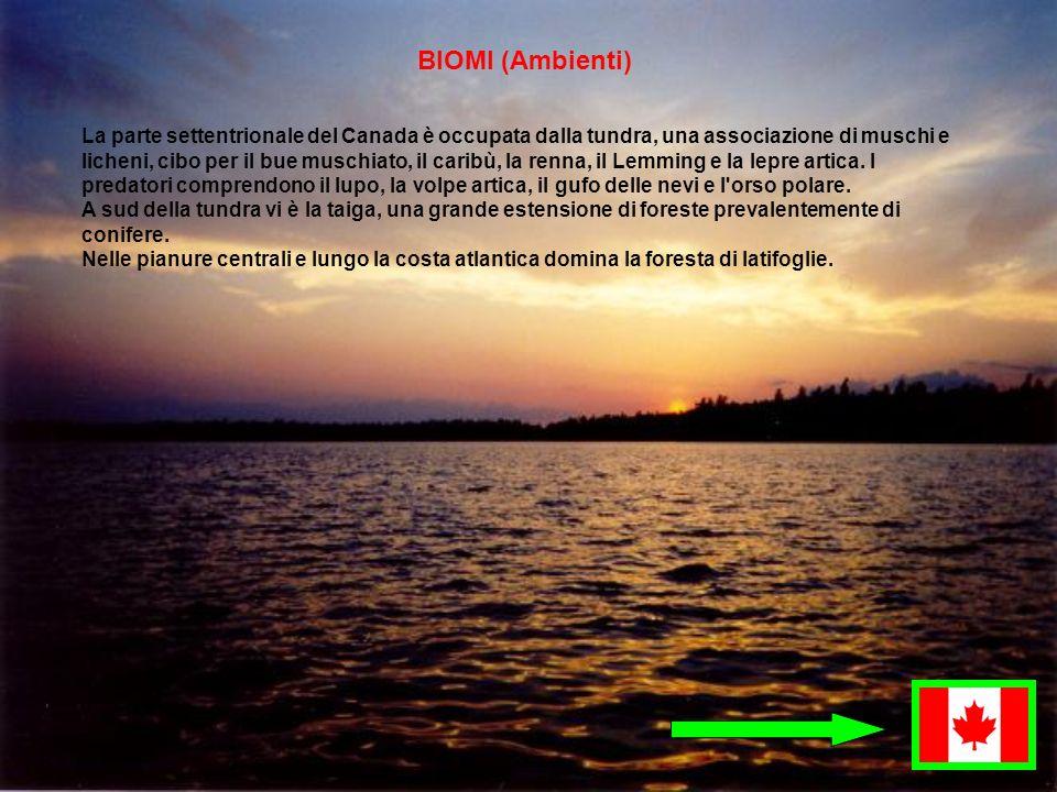 BIOMI (Ambienti)