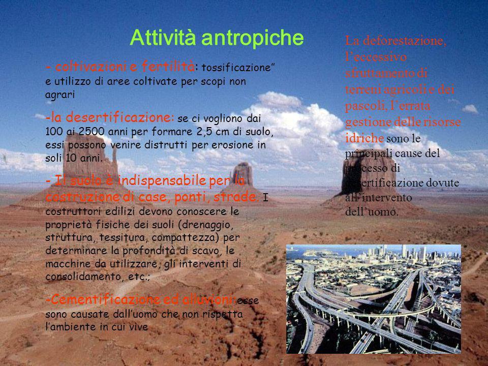 Attività antropiche