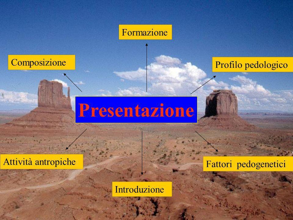 Presentazione Formazione Composizione Profilo pedologico