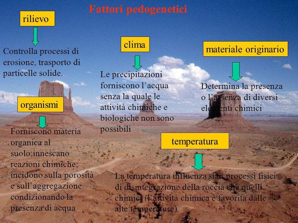Fattori pedogenetici rilievo clima materiale originario organismi