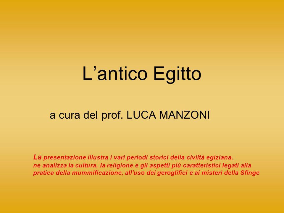 a cura del prof. LUCA MANZONI