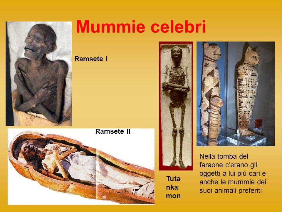 Mummie celebri Ramsete I Ramsete II