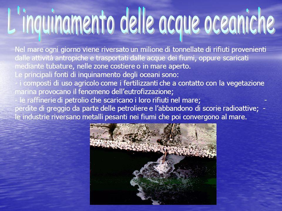 L inquinamento delle acque oceaniche