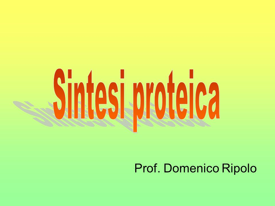 Sintesi proteica Prof. Domenico Ripolo