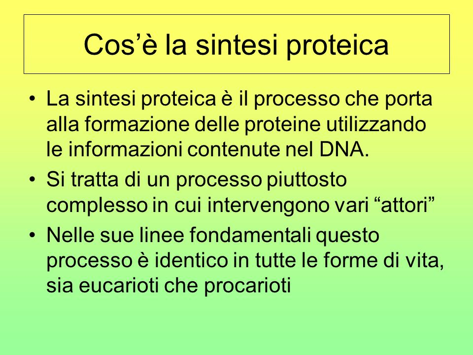 Cos'è la sintesi proteica