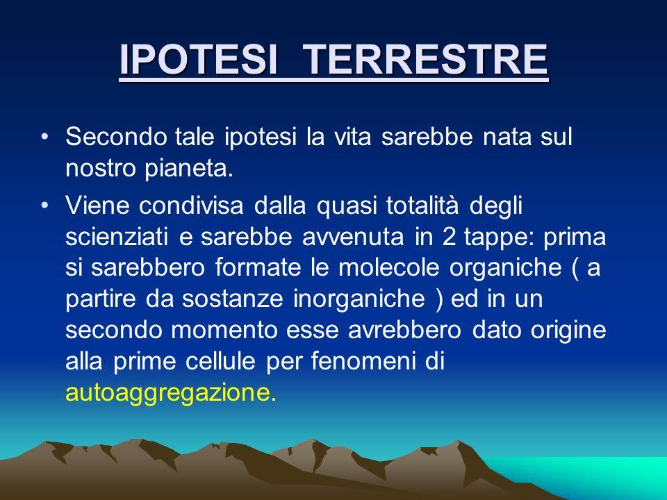 IPOTESI TERRESTRE Secondo tale ipotesi la vita sarebbe nata sul nostro pianeta.