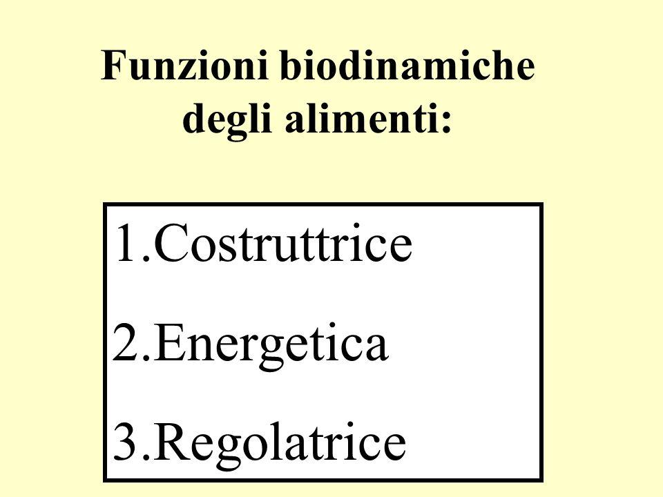 Funzioni biodinamiche degli alimenti: