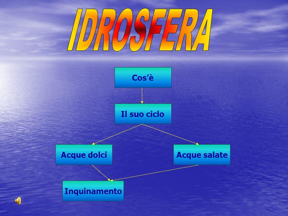 IDROSFERA Cos'è Il suo ciclo Acque dolci Acque salate Inquinamento