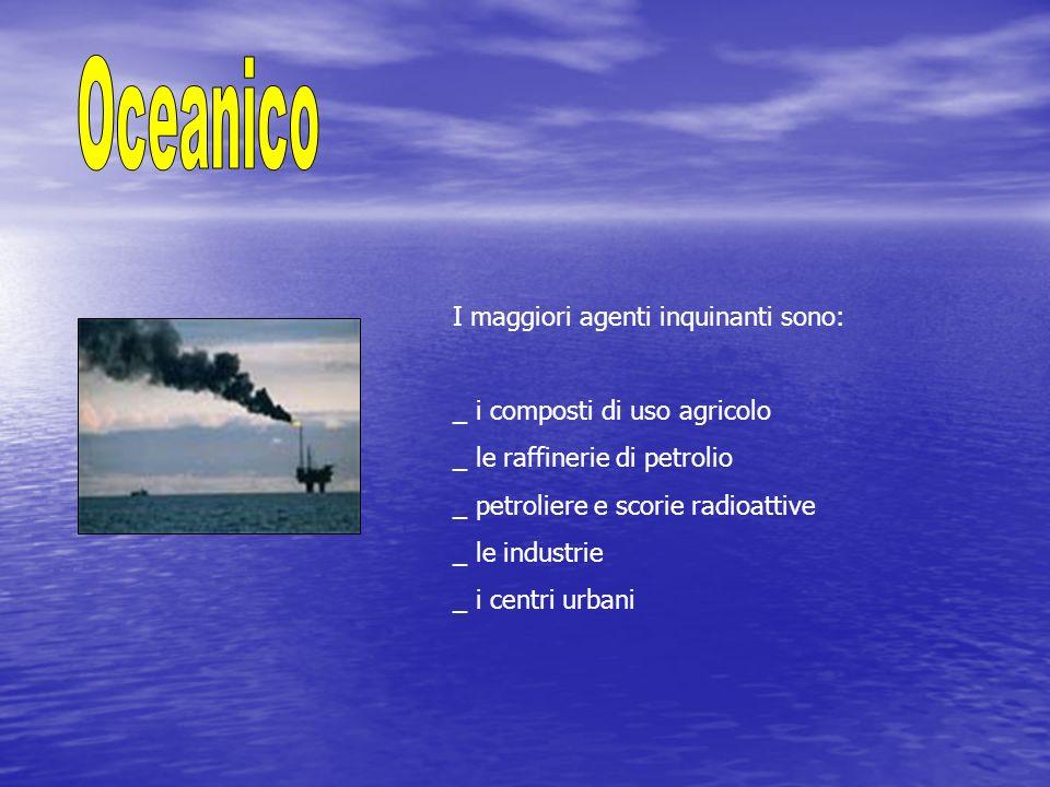 Oceanico I maggiori agenti inquinanti sono: