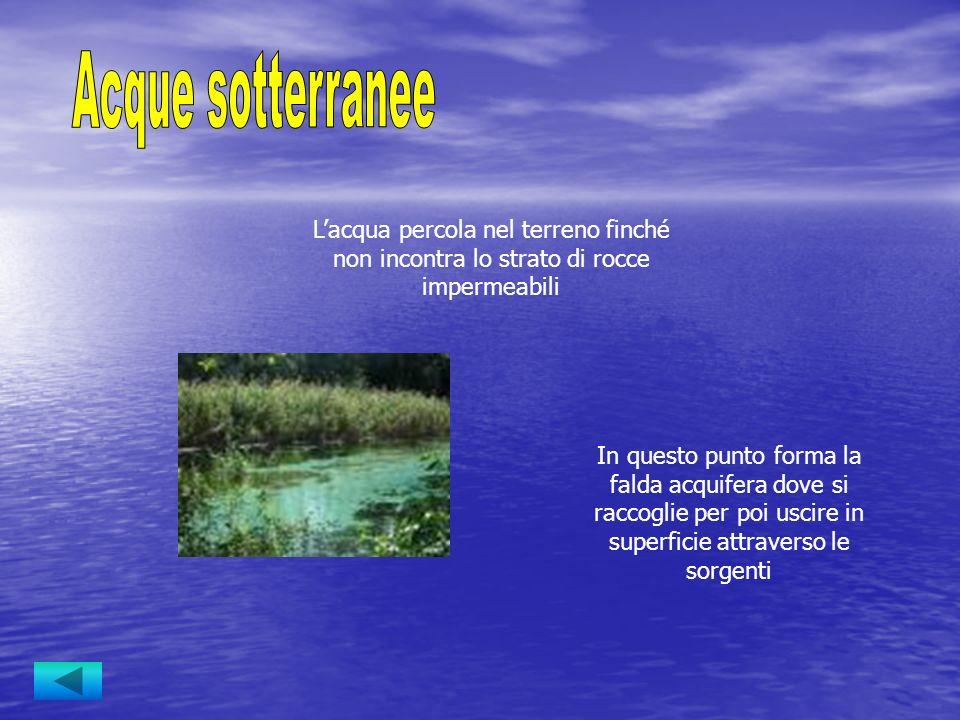 Acque sotterranee L'acqua percola nel terreno finché non incontra lo strato di rocce impermeabili.