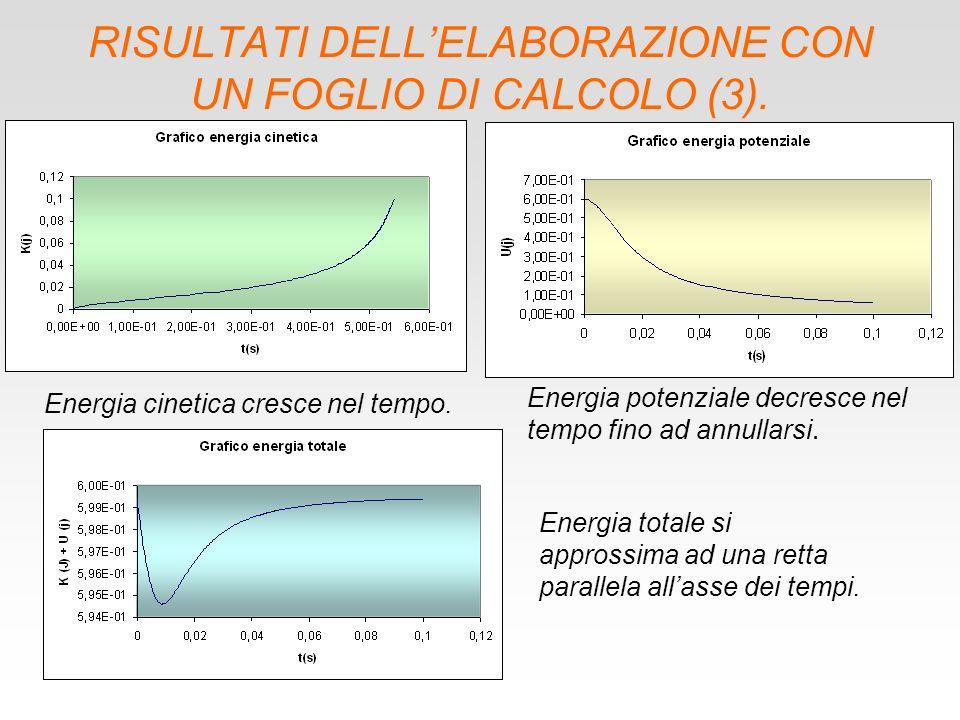 RISULTATI DELL'ELABORAZIONE CON UN FOGLIO DI CALCOLO (3).
