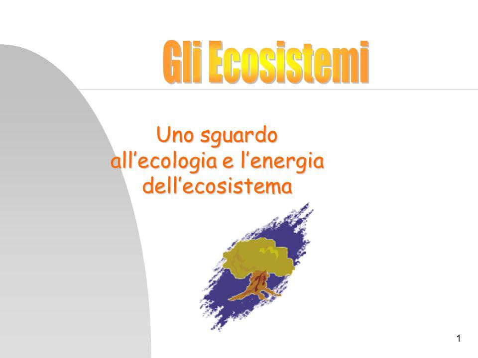 Uno sguardo all'ecologia e l'energia dell'ecosistema