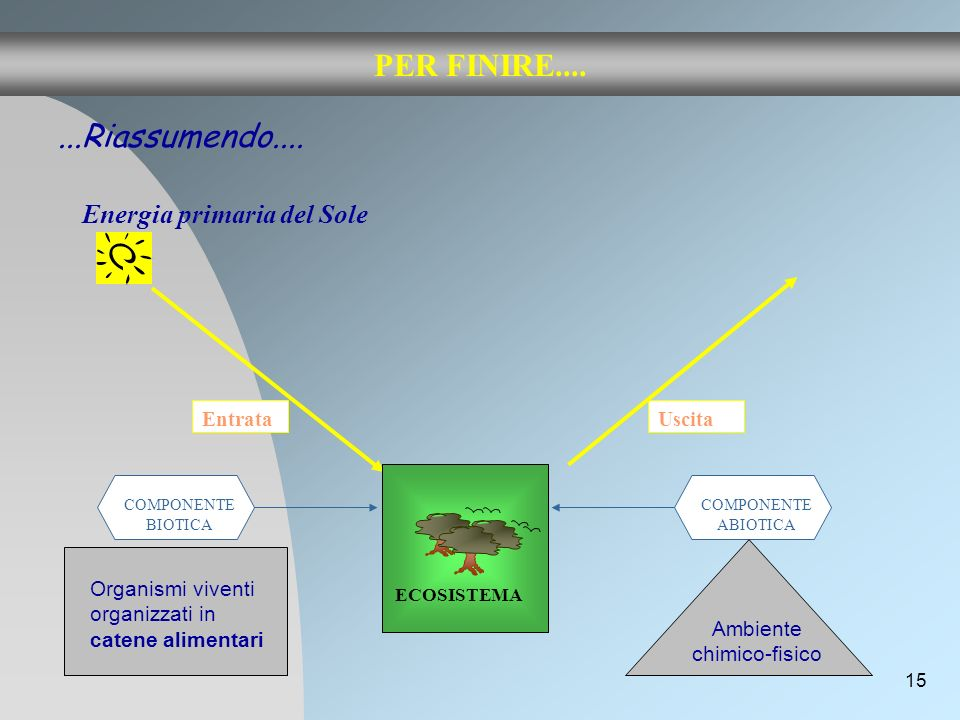 Ambiente chimico-fisico