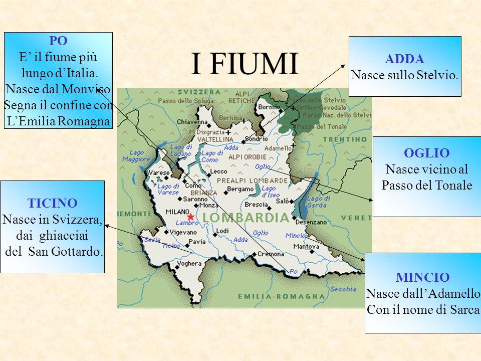 I FIUMI PO E' il fiume più ADDA lungo d'Italia. Nasce sullo Stelvio.