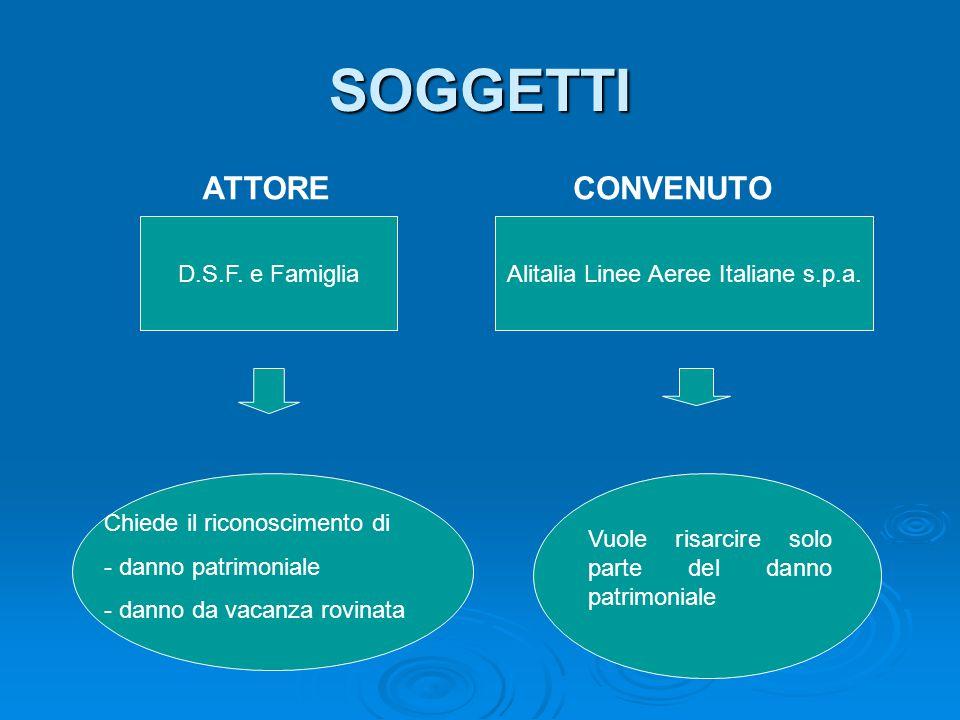Alitalia Linee Aeree Italiane s.p.a.