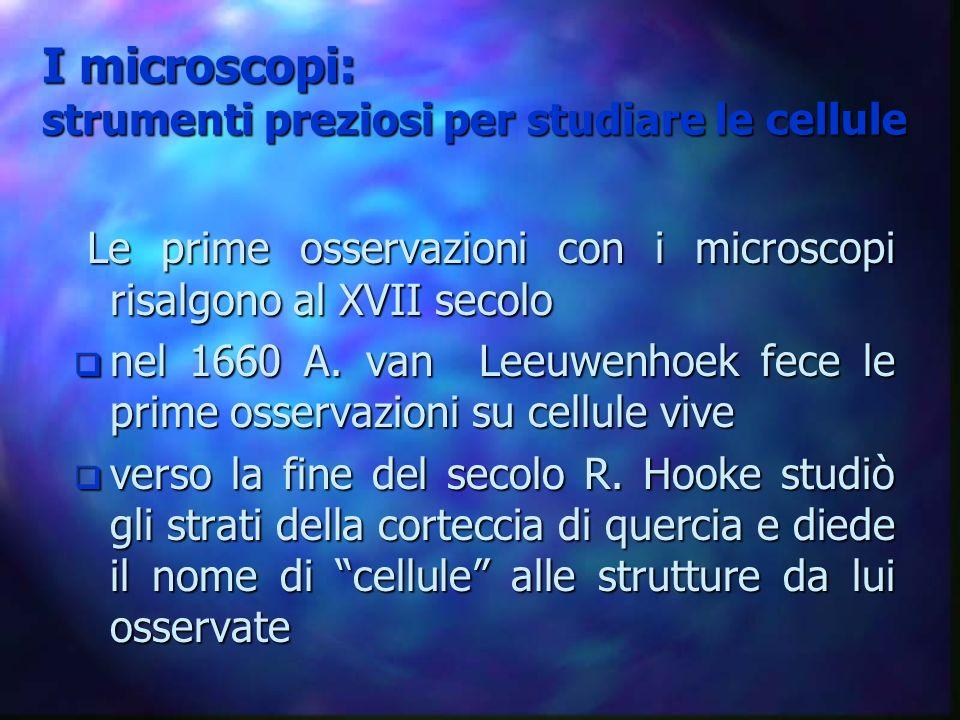 I microscopi: strumenti preziosi per studiare le cellule