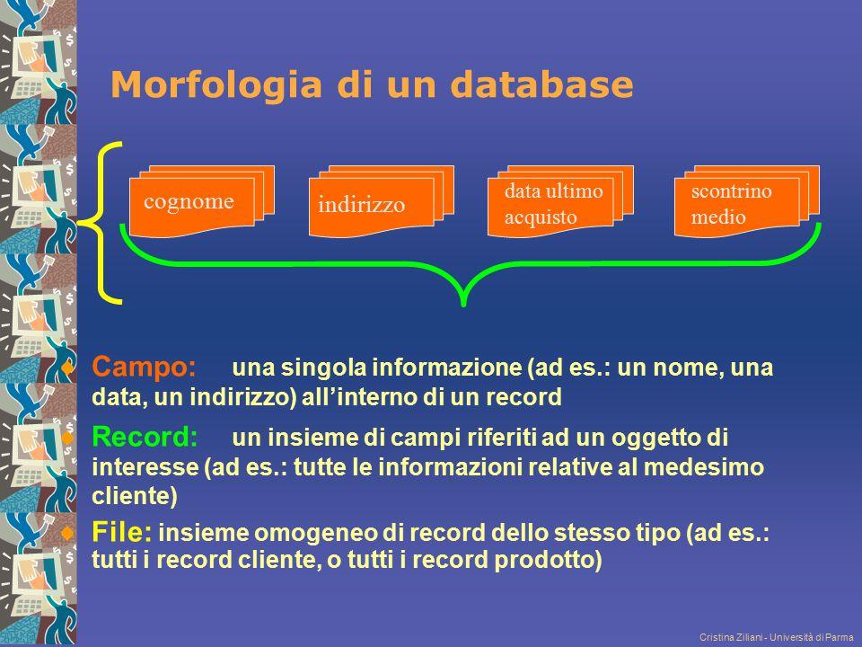 Morfologia di un database